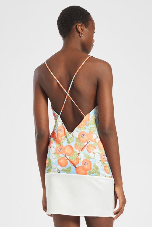 Peaches Slip Dress Multi